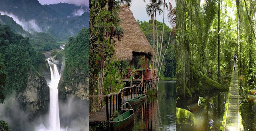 AMAZON-JUNGLE-BeautifulGlobal