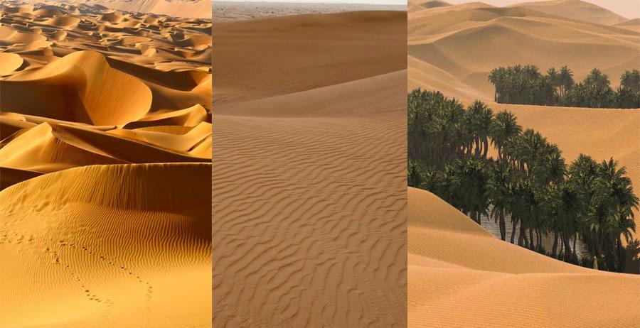 Arabian-Desert-BeautifulGlobal