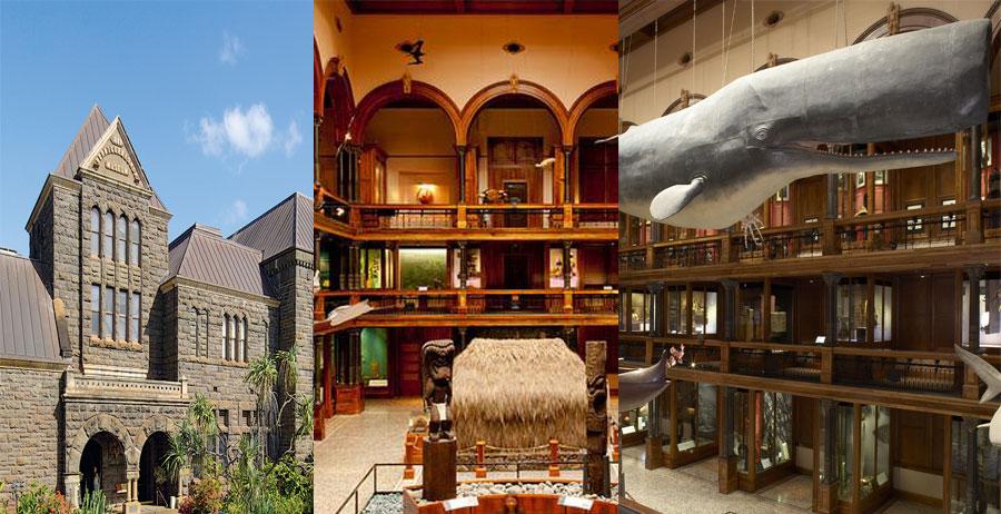 Bishop-Museum-BeautifulGlobal