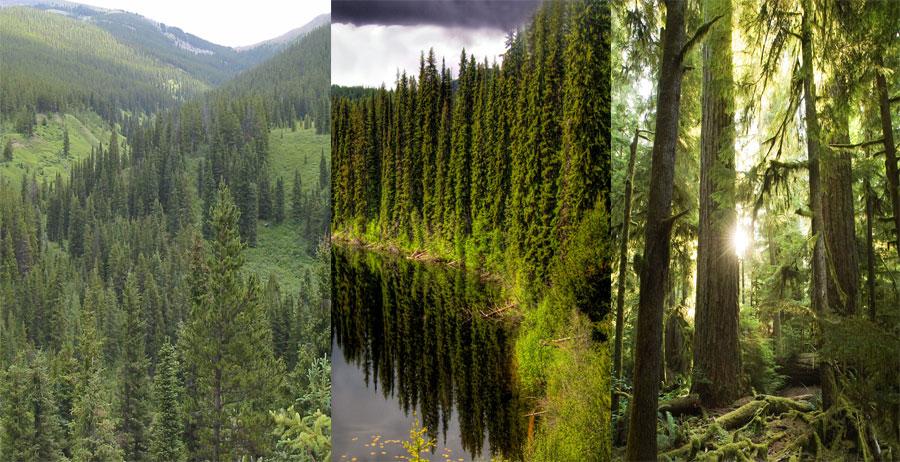 Canada-BeautifulGlobal
