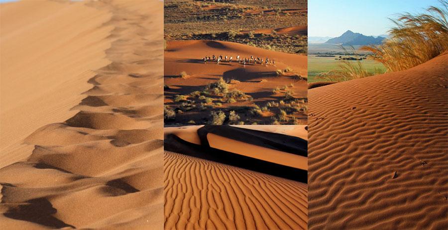 Kalahari-Desert-BeautifulGlobal