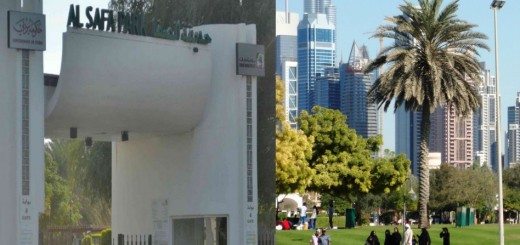 Top Views Of Safa Park Dubai