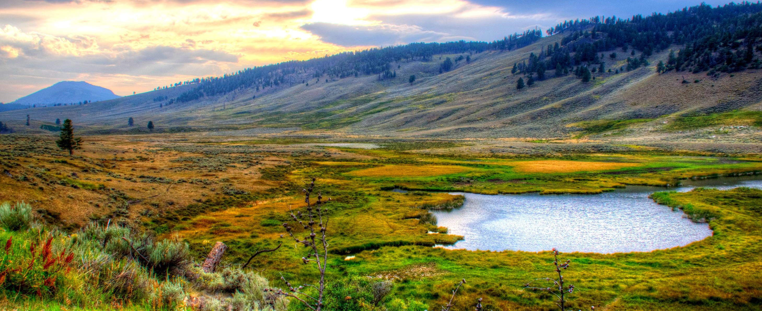 yellowstone-national-park-usa