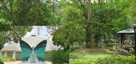 Bannerghatta National Park, The Popular Tourist Destination - Bangalore, Karnataka, Southern India