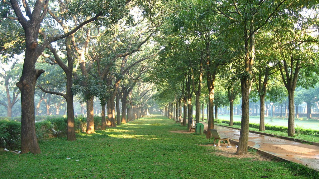 Beautiful Cubbon Park - Bangalore City Central Administrative Area