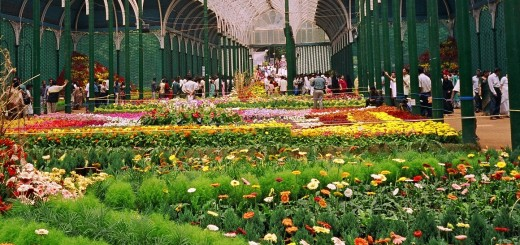 Lal Bagh, Bengaluru - Lal Bagh Botanical GardensLal Bagh, Bengaluru - Lal Bagh Botanical Gardens