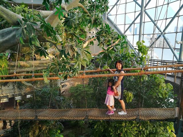 Green Planet, Dubai City Walk